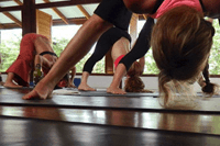 Yoga In Costa Rica at Blue Osa Retreat + Spa