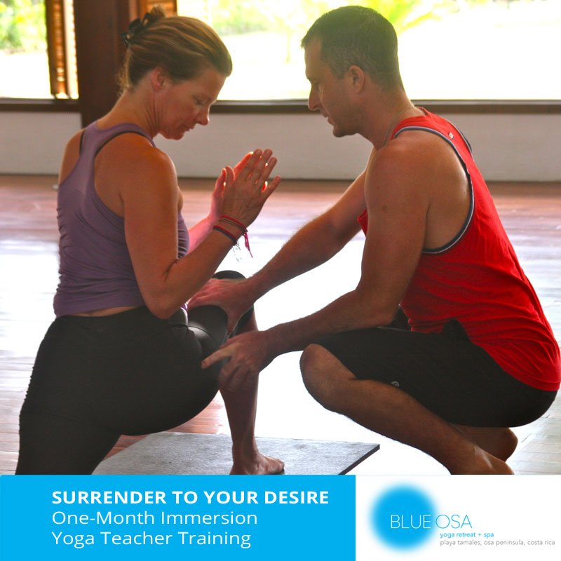 one-month-immersion-yoga-teacher-training-costa-rica