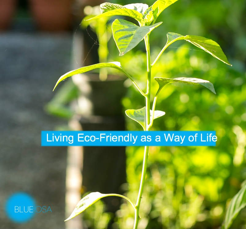 Living Eco-Friendly as a Way of Life Blue Osa Costa Rica