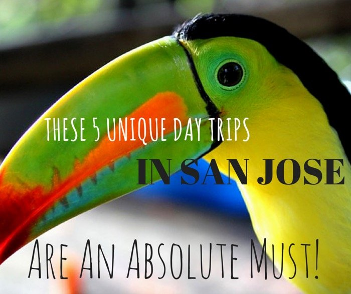 These 5 Unique Day Trips In San Jose Are An Absolute Must Toucan Santuary