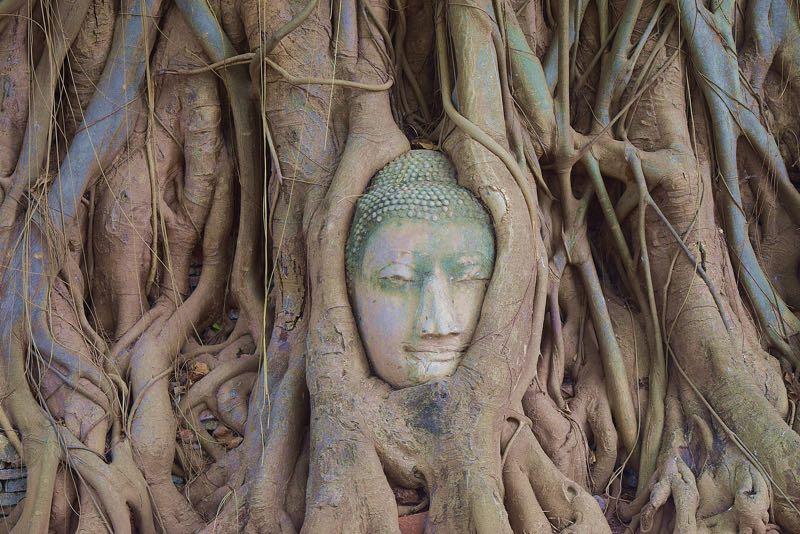 balance your root chakra