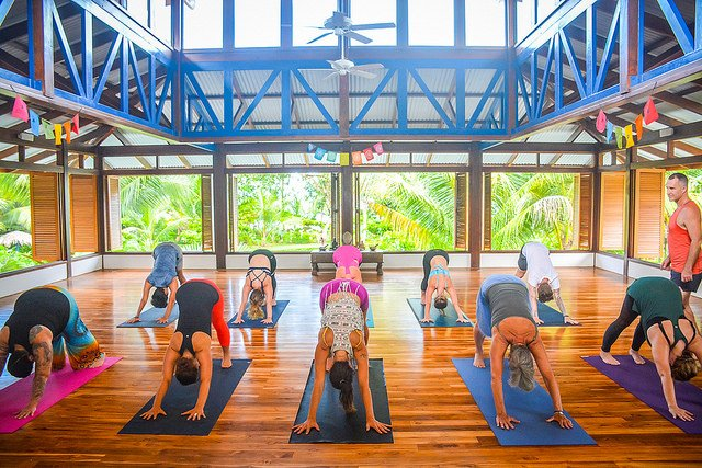 10+ QUESTIONS TO ASK BEFORE INVESTING IN A 300-HOUR YOGA TEACHER TRAINING
