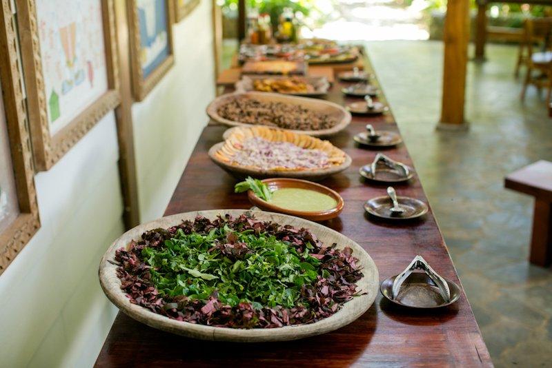What Is Costa Rican Cuisine Blue Osa Yoga Beach Resort Spa