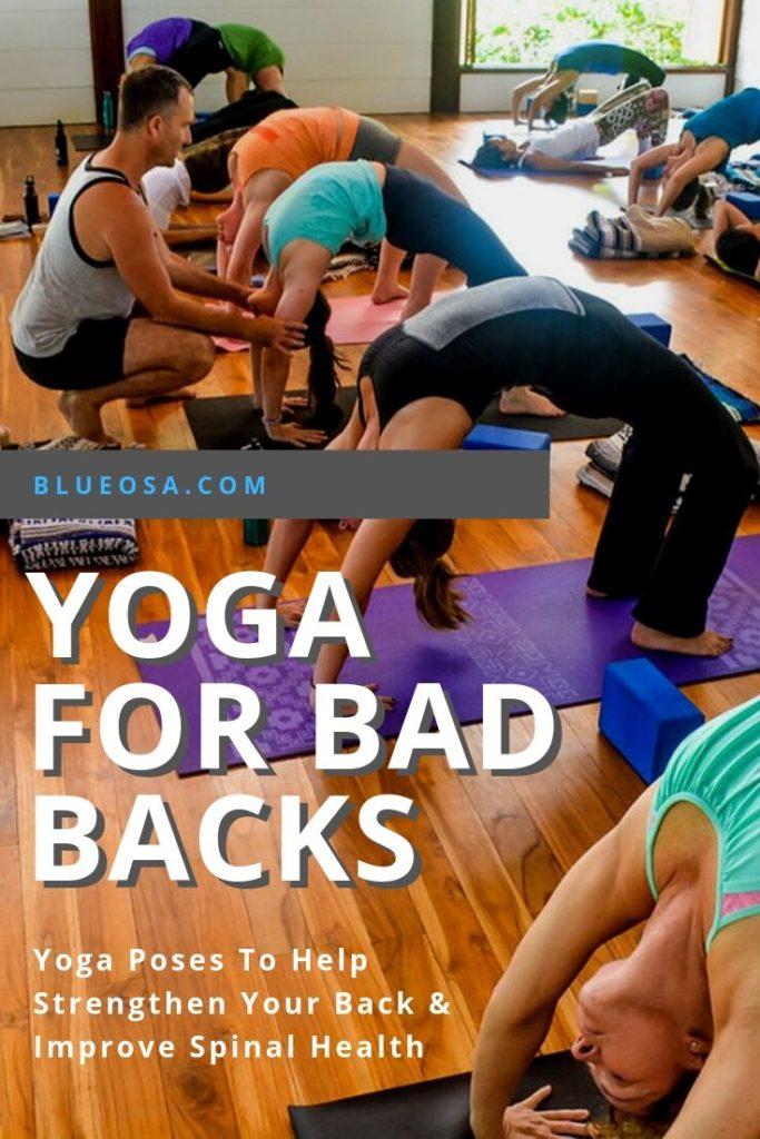 Yoga For Bad Backs Pinterest