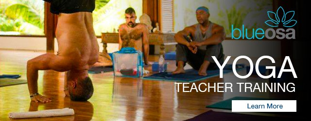 Yoga teacher training intensive blue osa yoga retreat + spa