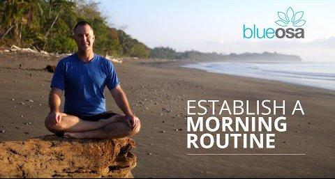 establish a morning routine