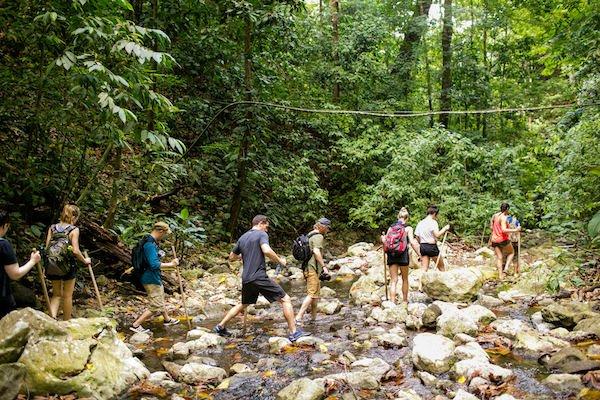 14 Day Yoga Teacher Training Immersion hike
