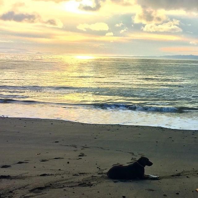 Rama enjoying the #morningsunrise