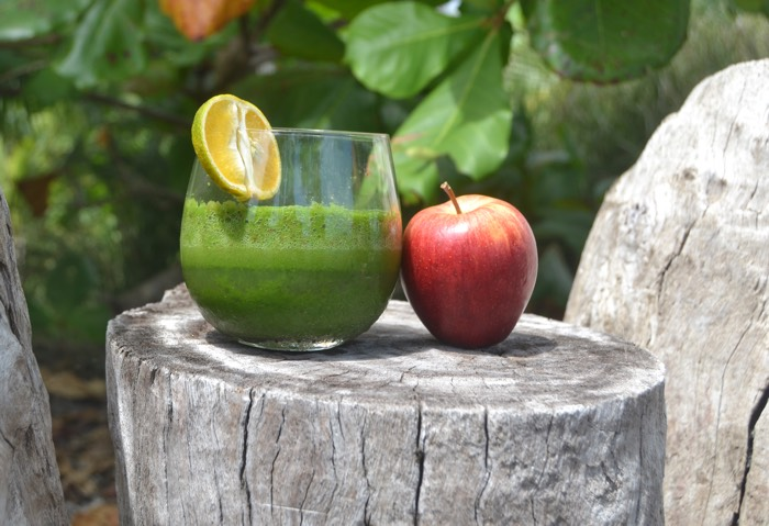 25 Fantastic Reasons To Pack Your Bags And Visit Blue Osa Right Now Smoothies