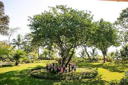 Five Guaranteed Ways of Becoming More Grounded Blue Osa Yoga Teacher Training Costa Rica Yoga Teacher Training Group