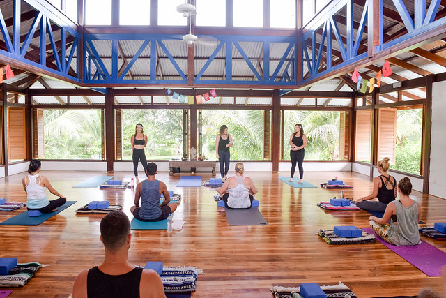 Yoga Leadership 300-Hour Yoga Teacher Training