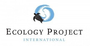 Ecology Project International - Volunteer To Save The Sea Turtles In Costa Rica