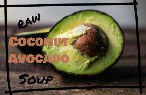 Refreshing Avocado Coconut Soup Blue Osa Yoga Costa Rica
