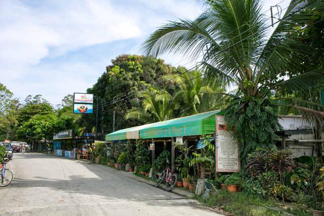 Travel Puerto Jimenez Costa Rica