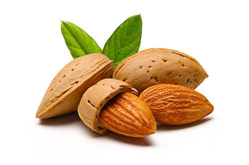 Costa Rica Osa Peninsula Yoga Retreat Almonds