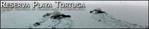 Reserva Playa - Save The Sea Turtles In Costa Rica