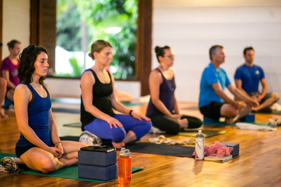 on the meditation and mindfulness path