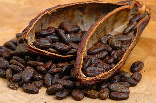Costa Rica Osa Peninsula Yoga Retreat Raw Cacao