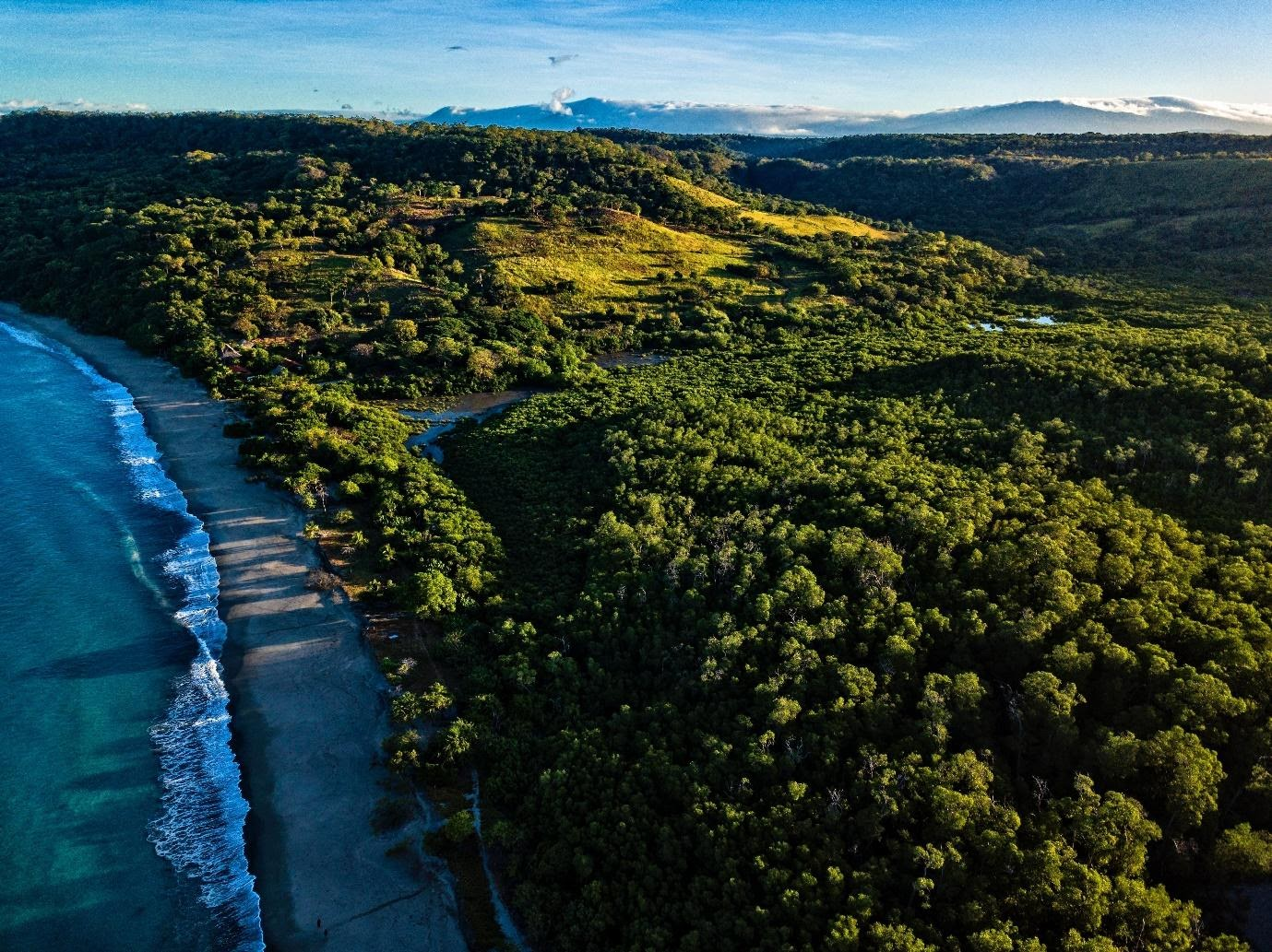 Unconventional Travel Tips to Broaden Your Mind in Costa Rica | Costa Rica Beach| Blue Osa Yoga Retreat