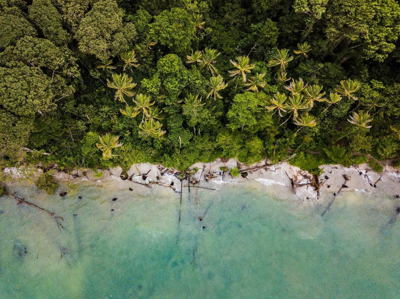 Unconventional Travel Tips to Broaden Your Mind in Costa Rica | Costa Rica | Blue Osa Yoga Retreat