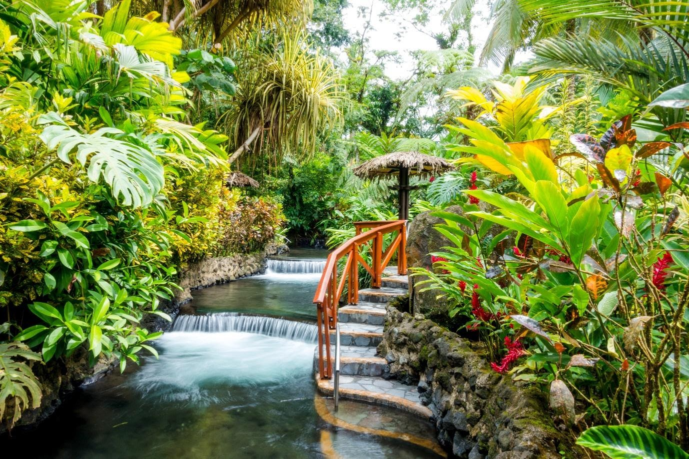 Unconventional Travel Tips to Broaden Your Mind in Costa Rica | Travel Costa Rica | Blue Osa Yoga Retreat